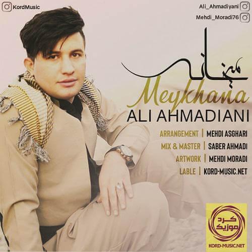 علی احمدیانی - می خانه