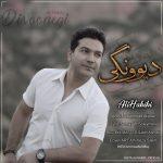 علی حبیبی – دیوونگی