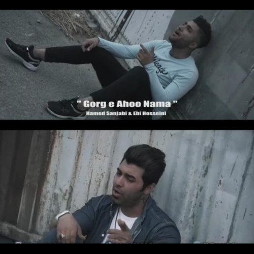 دانلود آهنگ ابی حسینی و حامد سنجابی به نام گرگ آهونما