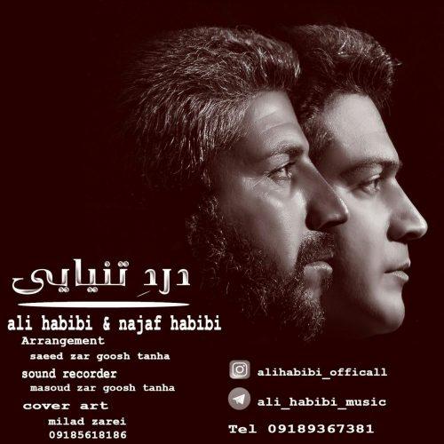 دانلود آهنگ جدید نجف حبیبی و علی حبیبی به نام دهرد تهنیائی